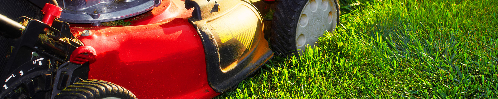 Red push lawn mower on green grass with the sun shining on it