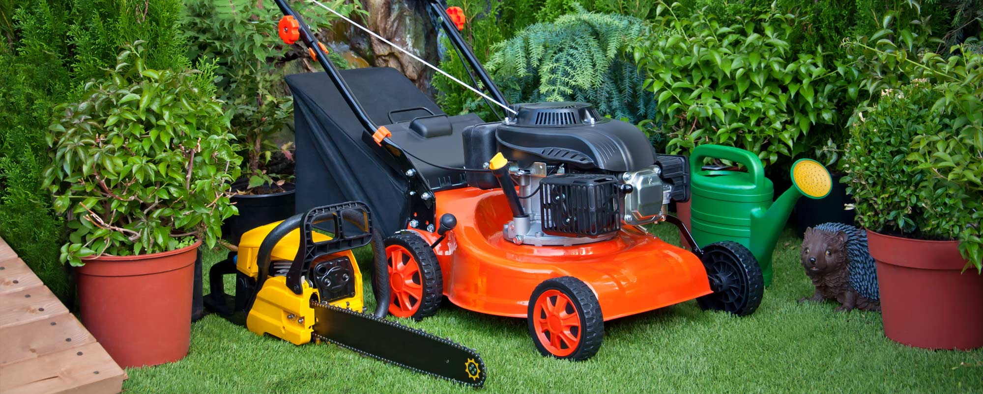 Grouping of lawn care equipment including a walk-behind push lawn mower and gas chainsaw